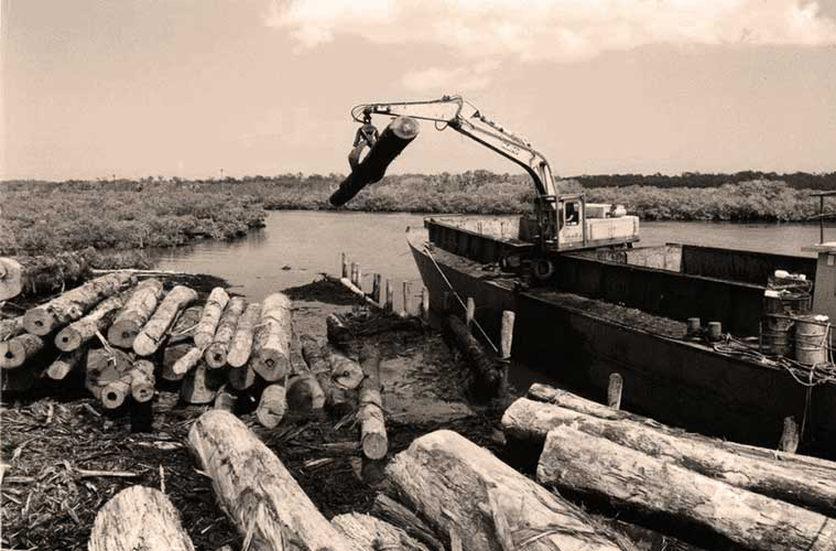 Last Load of Logs from Fraser Island